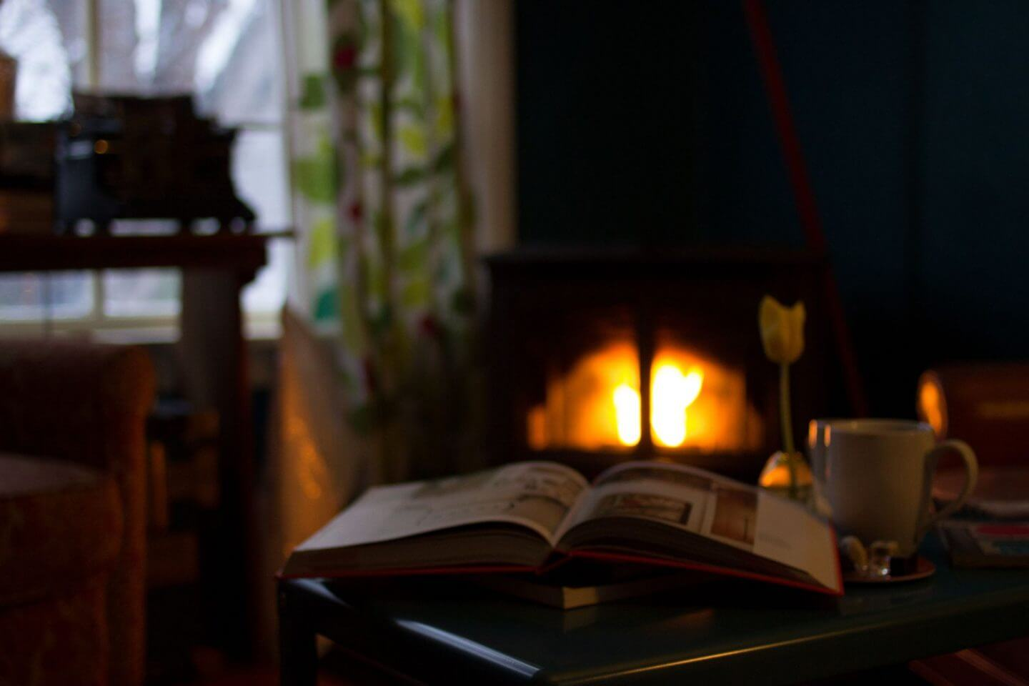 fire burning with book in front