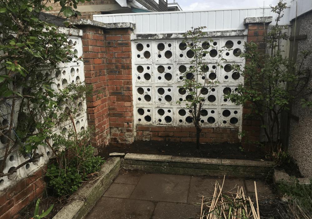 Garden Plans for Spring 2019