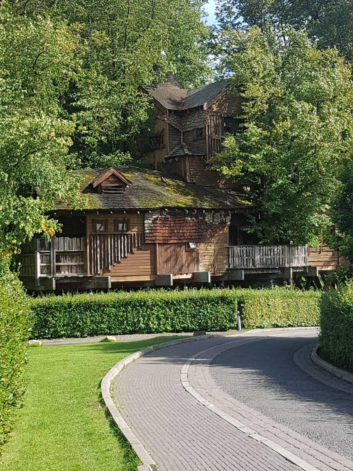 The Treehouse restaurant in Alnwick. Wedding venue in Alnwick.